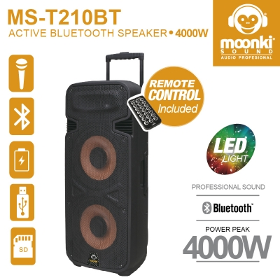 ACTIVE BLUETOOTH SPEAKER MOONKI MS-T210BT