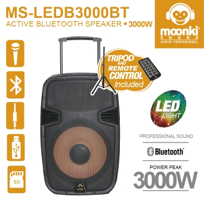 Active Bluetooth Speaker Moonki Sound MS-LEDB3000BT